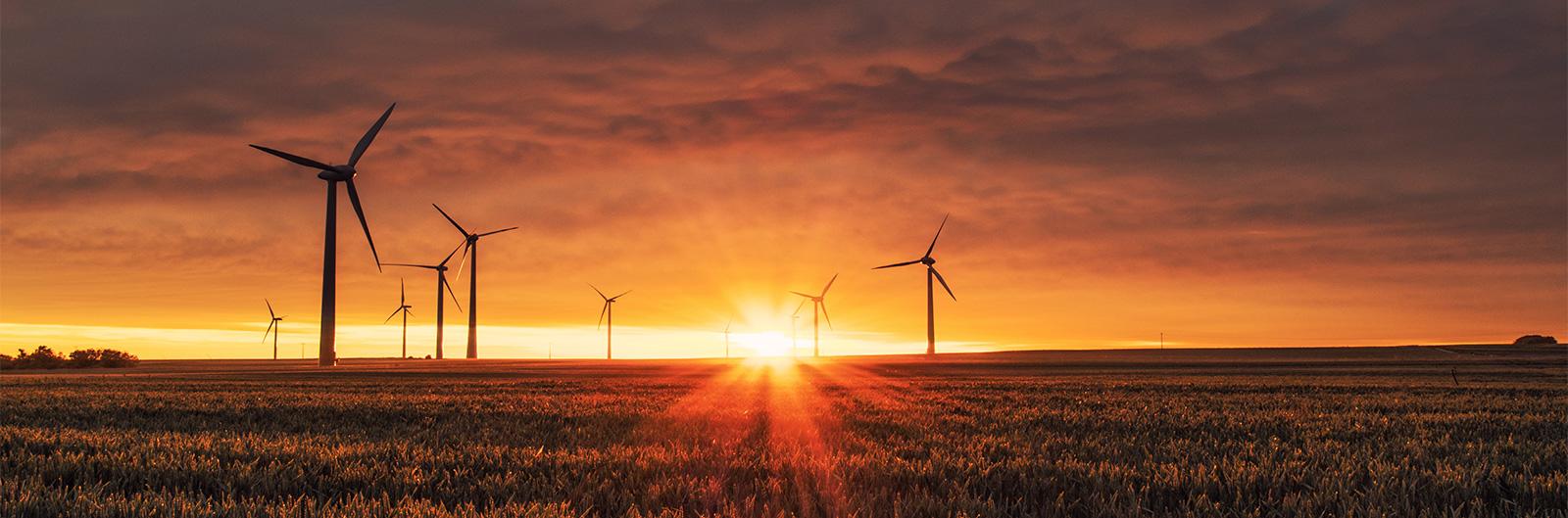3 dispositions de la loi Climat bousculent la grande conso